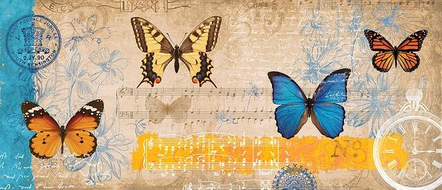 butterfly-834843_640